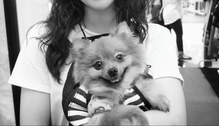 Grace + Luna